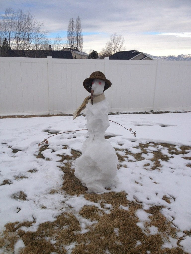 melted_snowman